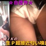 【Pcolle】電車内でミニスカJKの純白パンツ盗撮!