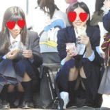 【Pcolle】美少女JKの食い込み座りパンチラ盗撮!